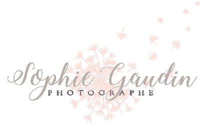 Sophie Gaudin Photographe Saint Malo Logo